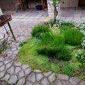 Отзыв про Частное домовладение Iris, common.months_num.06 2020, фото 14